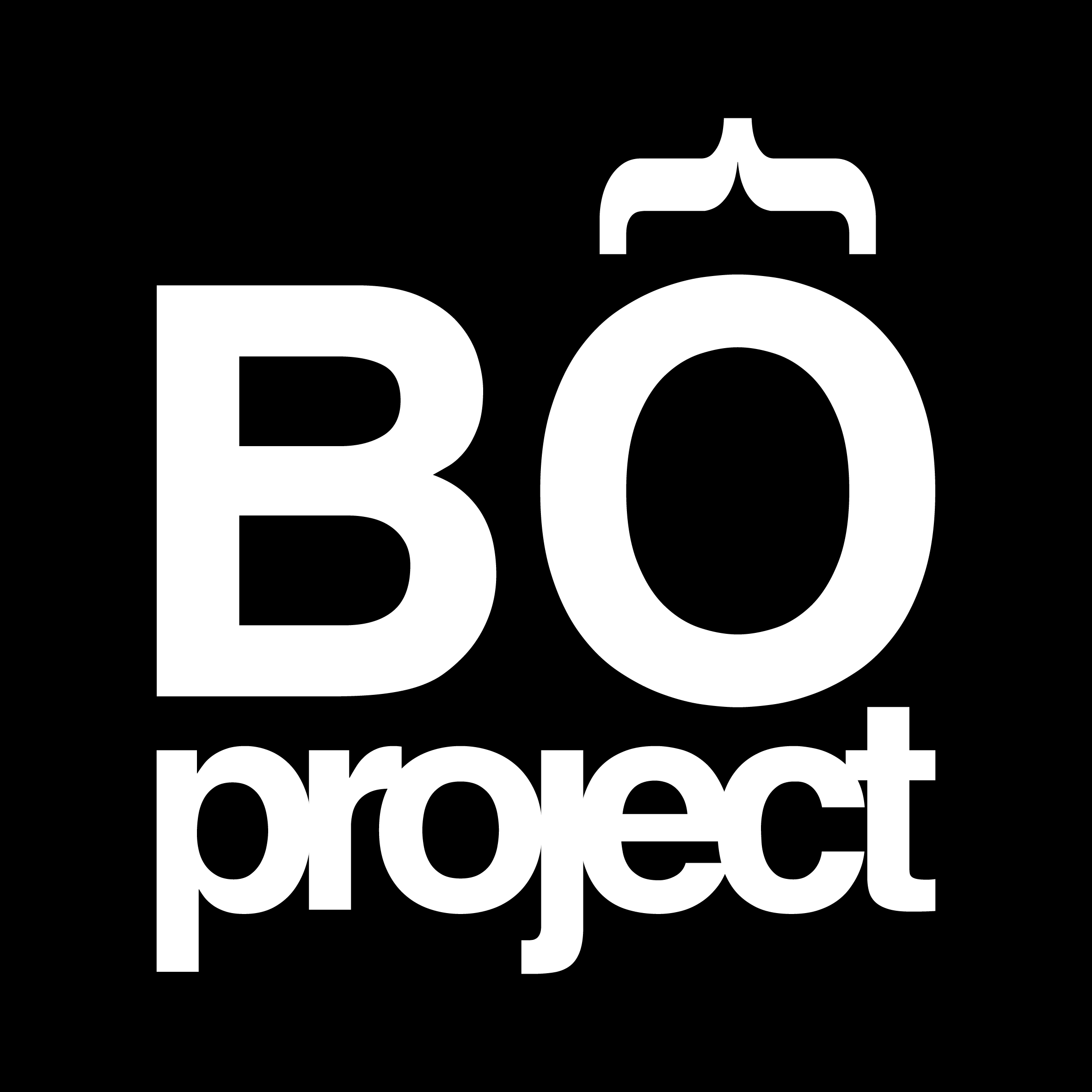 Bo Project